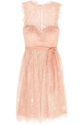 Mikael Aghal Pleated Leavers Lace And Tulle Dress Blush