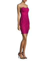Likely Spruce Body Con Lace Dress Orchid Scarlet
