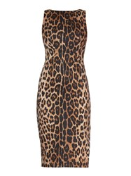 Altuzarra Shadow Leopard Print Midi Dress