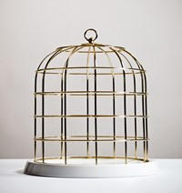 Seletti Twitable Gold Metal Birdcage With Porcelain Base