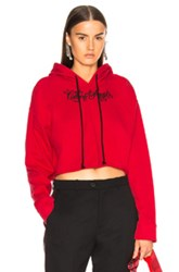 Adaptation Embroidered Cropped Hoodie In Red