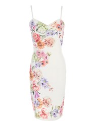 Jane Norman Floral Punchout Bodycon Dress Cream
