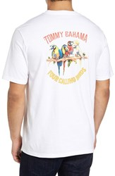 Tommy Bahama Men's Big And Tall Four Calling Birds T Shirt