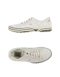 Cat Sneakers Ivory