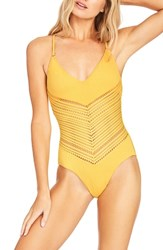 Robin Piccone Perla One Piece Swimsuit Dandelion