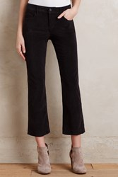 Pilcro Stet Cropped Flare Cords