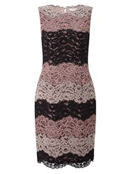 Precis Petite Cady Stripe Lace Dress Multi Coloured Multi Coloured