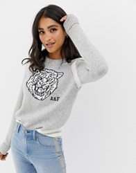 Abercrombie And Fitch Tiger Knit Jumper Grey