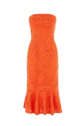 Warehouse Strapless Premium Lace Dress Orange