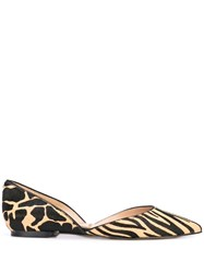 Sam Edelman Rodney Flat Pumps Brown