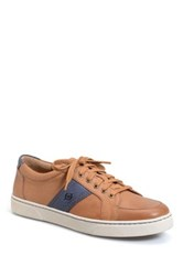 Born Baum Sneaker Brown