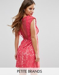 Little Mistress Petite Skater Dress In Lace Coral Pink