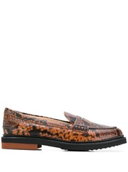 Tod's Python Print Loafers Brown