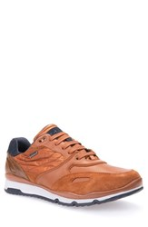 Geox Men's 'Sandro Abx' Amphibiox Sneaker Rust Navy Leather