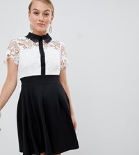 Paper Dolls Petite 2 In 1 Crochet Lace Top Skater Dress With Contrast Collat Detail In Monochrome Multi