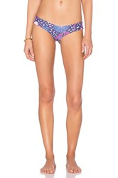 Stone Fox Swim Tucker Bottom Purple
