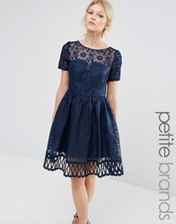 Chi Chi Petite London Premium Lace Dress Cutwork Detail And Cap Sleeve Navy