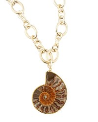 Fossilized Shell Pendant Necklace Brown Devon Leigh