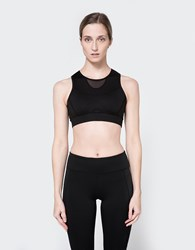 Which We Want Mesh Panel Sports Bra Black
