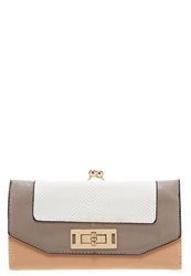 New Look Cassie Wallet Mink Taupe
