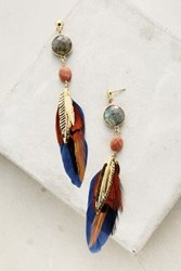 Anthropologie Cobalt Plume Drops Blue Motif