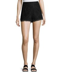 Foxiedox Darby Floral Lace Shorts Black