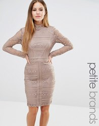 Missguided Petite Lace Long Sleeve High Neck Dress Mocha Brown