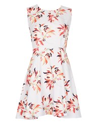 Cutie Large Floral Print Dress Grey