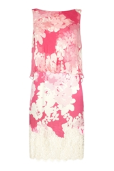 Damsel In A Dress Ebony Rose Lace Dress Pink