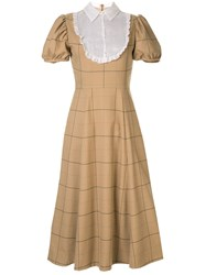 Macgraw Library Dress Brown