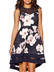 Quiz Floral Fit And Flare Dress Blue
