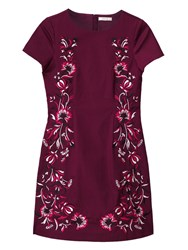 Precis Petite Dianne Embroidered Dress Red