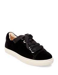 Betsey Johnson Lacy Velvet Lace Up Sneakers Black