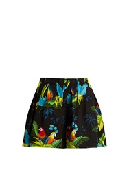 Marc Jacobs Parrot Print Stretch Cotton Shorts Black Multi