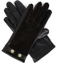 Ted Baker Sue Suede And Leather Gloves Black
