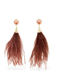 Rosantica Rivoluzione Feathers And Crystal Earrings Brown