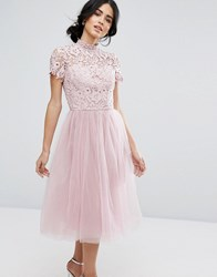 Chi Chi London High Neck Lace Midi Dress With Tulle Skirt Dusky Pink