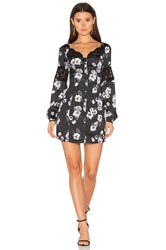 Majorelle Chloe Dress Black And White
