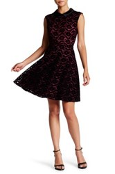 Betsey Johnson Lace Fit And Flare Party Dress Orange