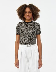 Which We Want Luna Knit Top Brown Leopard