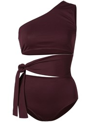 Eres One Shoulder Swimsuit Purple