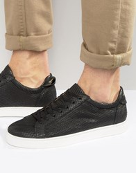 Selected Homme David Leather Snake Trainers Black