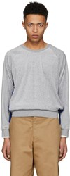 3.1 Phillip Lim Grey And Blue Classic Velour Sweatshirt