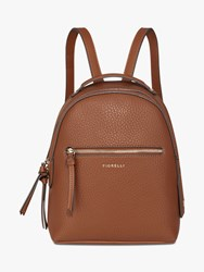 Fiorelli Anouk Small Backpack Brown