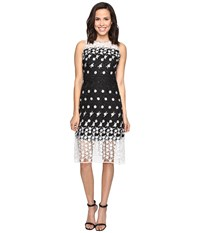 Rsvp Hontaki Dress Black Ivory Women's Dress