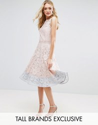 Little Mistress Tall Allover Lace Midi Prom Skater Dress With Contrast Hem Nude Pink