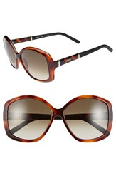 Chloe Women's Chloe 'Daisy' 58Mm Sunglasses Tortoise