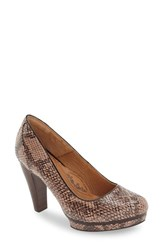 Sofft Women's 'Mandy' Platform Pump Champagne Snake Print Leather