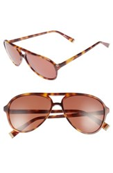 Ed Ellen Degeneres Women's 58Mm Gradient Aviator Sunglasses Tortoise