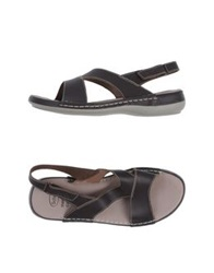 Scholl Sandals Dark Brown